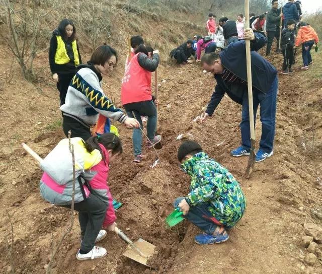 正在植树的志愿者们